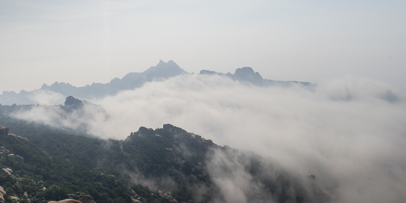 实拍平流雾笼罩崂山 宛如一幅水墨画