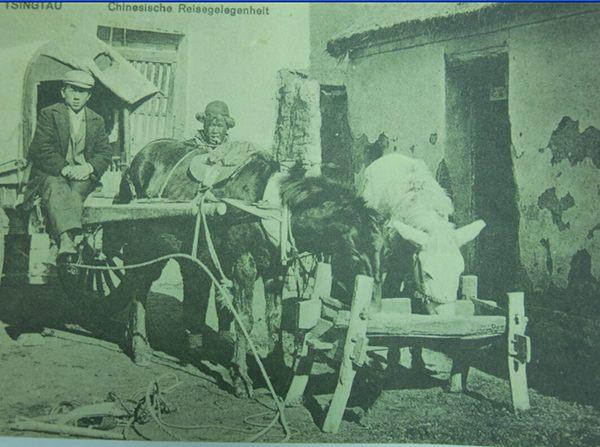 青岛农村早期出行工具:骑驴走亲戚的娘俩(图)