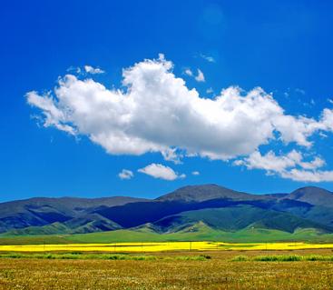 洒在人间的彩虹 初春来一趟色彩之旅